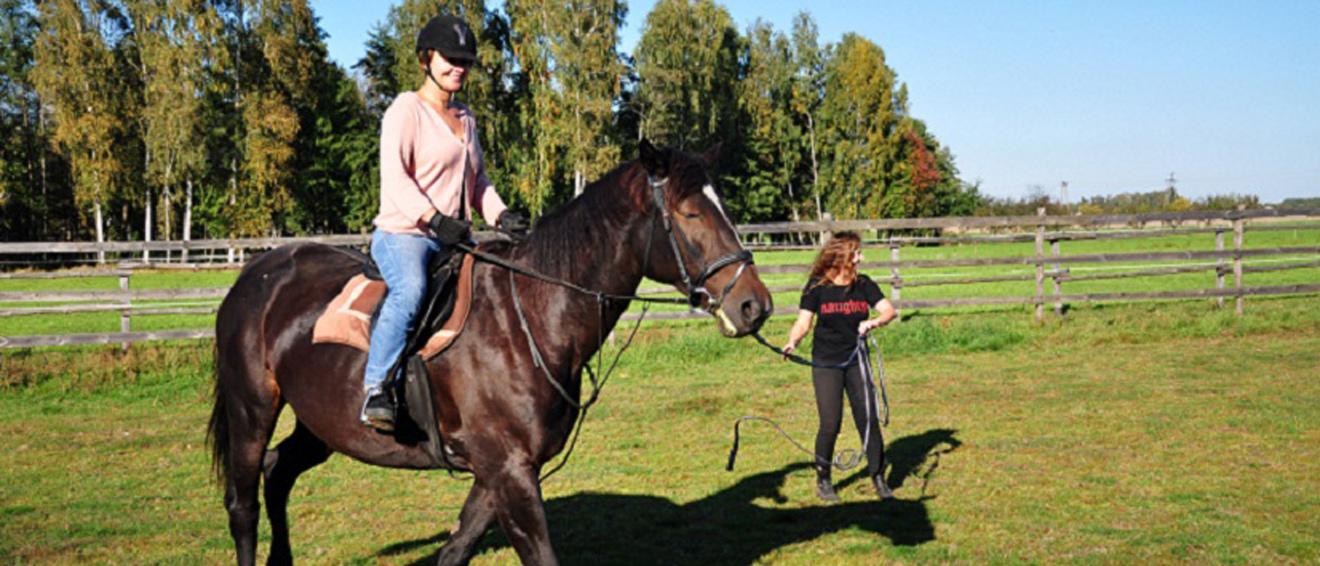 Permalink to:Stajnia i pensjonat koni